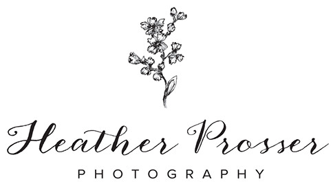 Toronto Wedding & Portrait Photography by Heather Prosser Photography