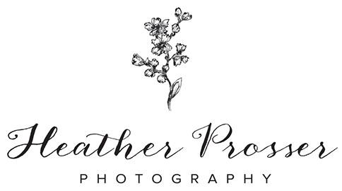 Toronto Wedding & Portrait Photography by Heather Prosser Photography
