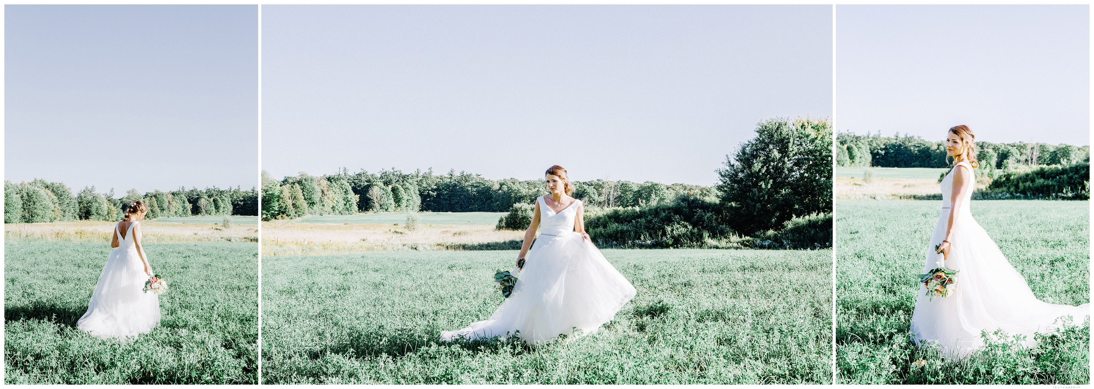Ontario Barn Wedding_2208.jpg