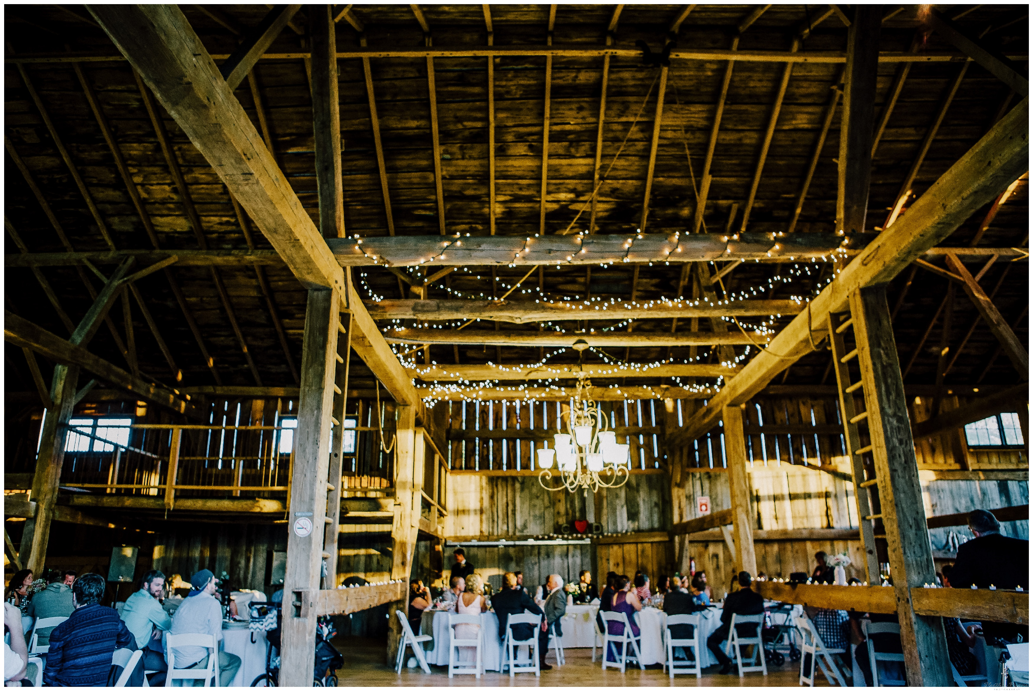 Ontario Barn Wedding_2260.jpg